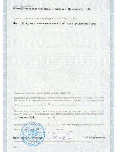 Медицинская лицензия медицинского центра Русь в Ессентуках - оборотная сторона
